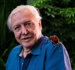 David Frederick Attenborough