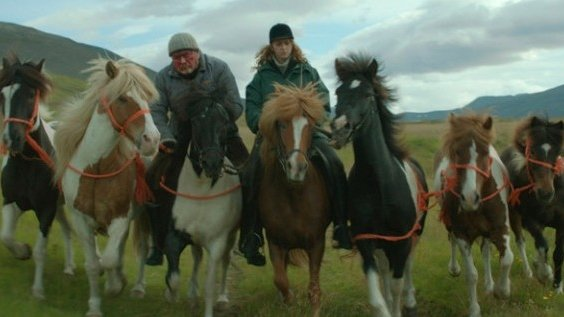 Historias de caballos y hombres