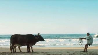 Los ausentes (Largometraje)