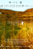 La danza del hipocampo