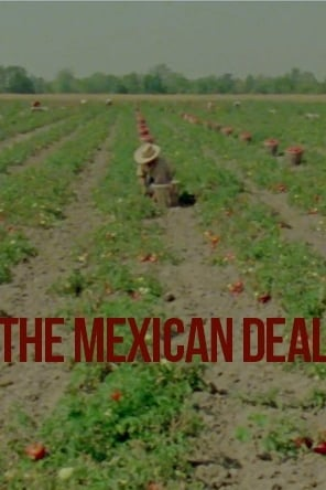 The mexican deal