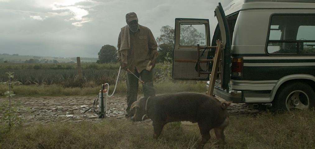 Sr. Pig