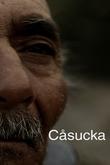 Cåsucka