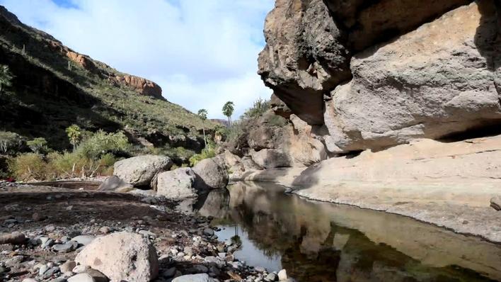 Pinturas rupestres de Baja California Sur
