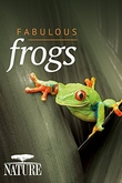 Natural World: Attenborough's Fabulous Frogs