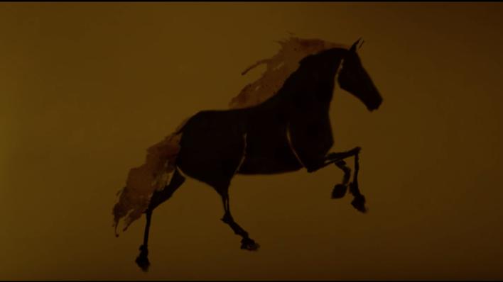 Piedra de caballo
