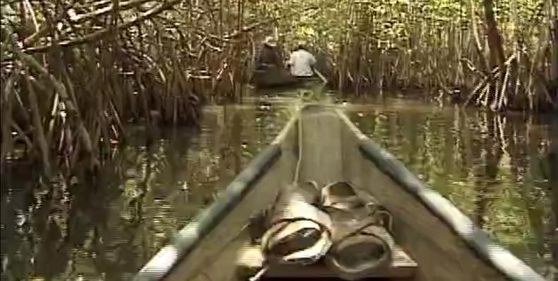 Chacahua: Reflejos de un parque