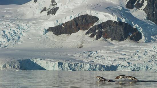 Antártida. Un mensaje de otro planeta