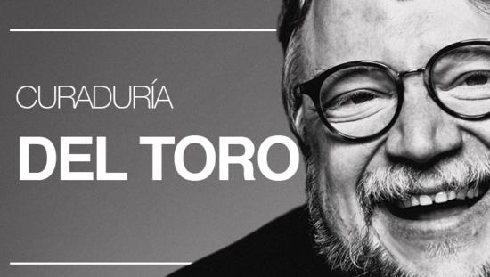 Curaduría Del Toro